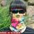日本焼け止めマスク女性夏防紫薄手タイプ通気性保護ネックマスク男性屋外騎行魔術頭巾速乾マフラー腕カバー中国カンフー